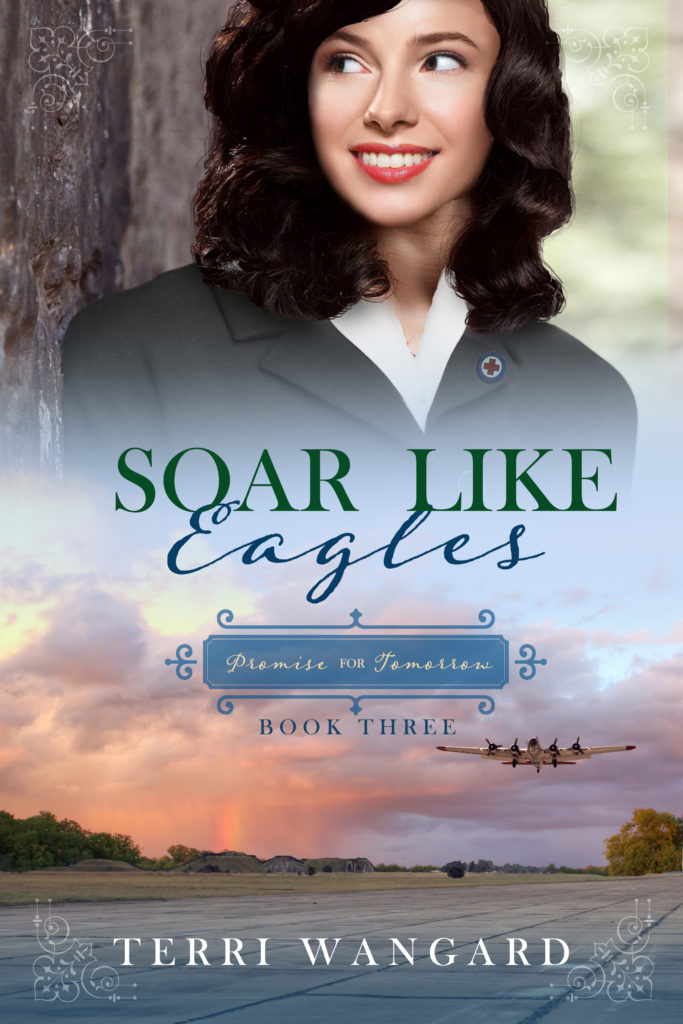 Book Cover: Soar Like Eagles