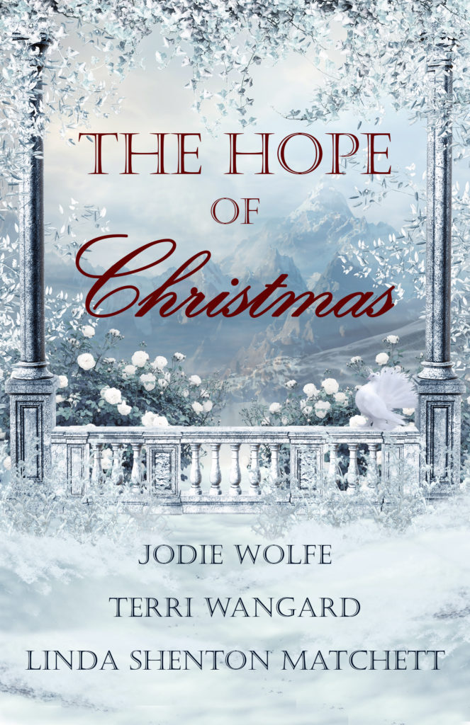 Book Cover: The Hope of Christmas