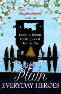 Book Cover: Plain Everyday Heroes
